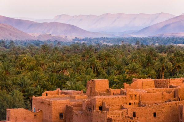 Morocco study programme
